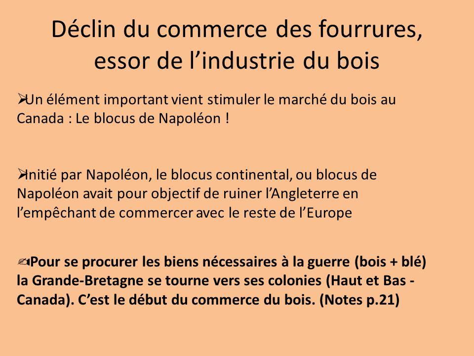 Déclin du commerce des fourrures, essor de l'industrie du bois