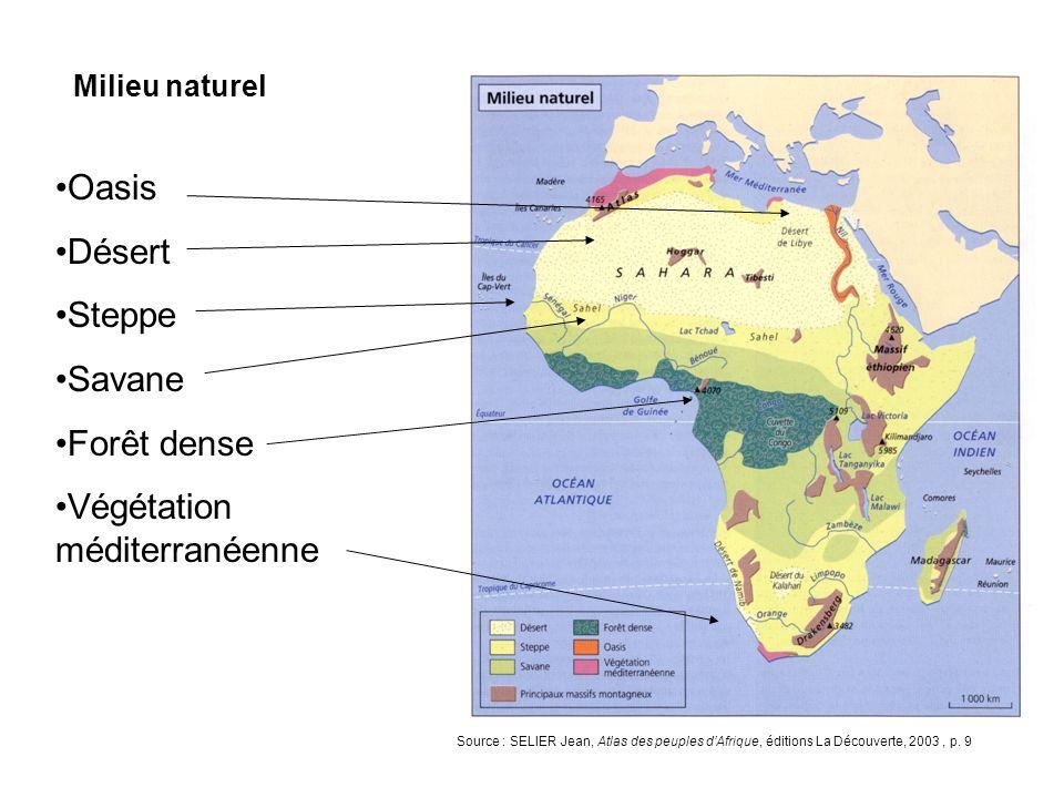 Végétation méditerranéenne