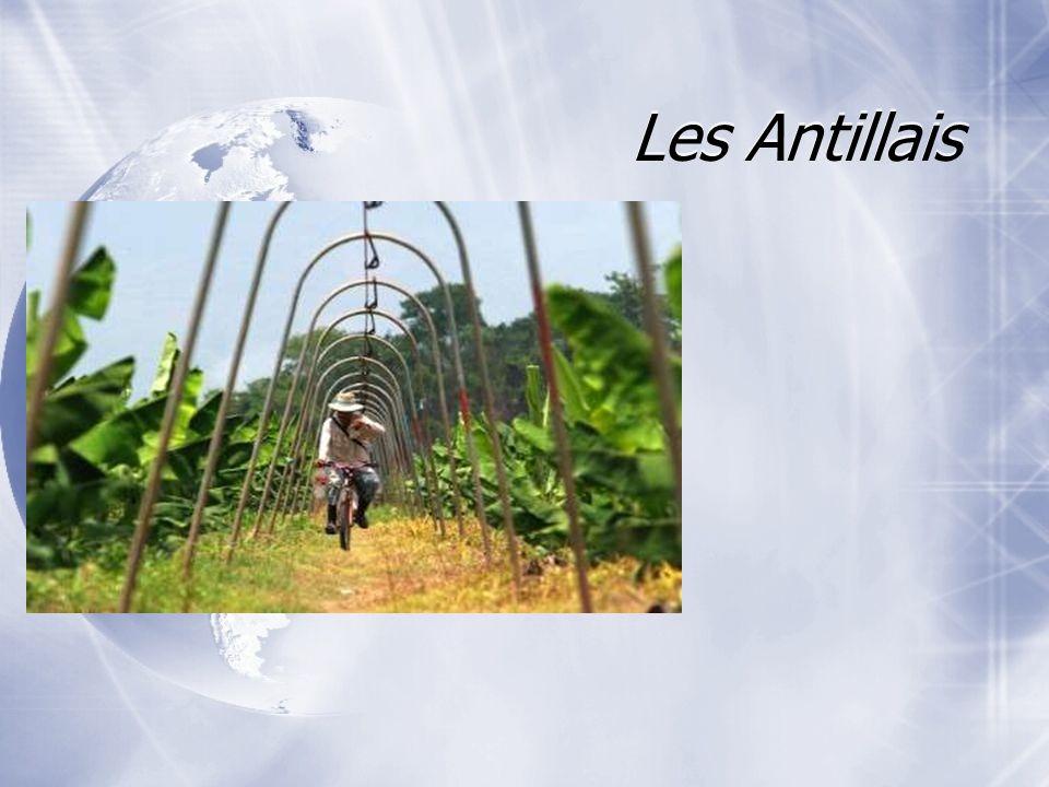 Les Antillais