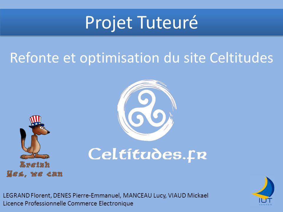 Refonte et optimisation du site Celtitudes