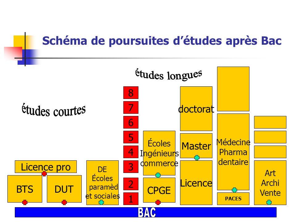 Schéma de poursuites d'études après Bac