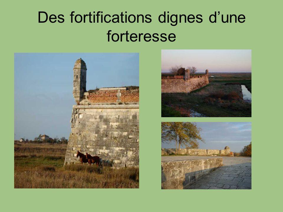 Des fortifications dignes d'une forteresse