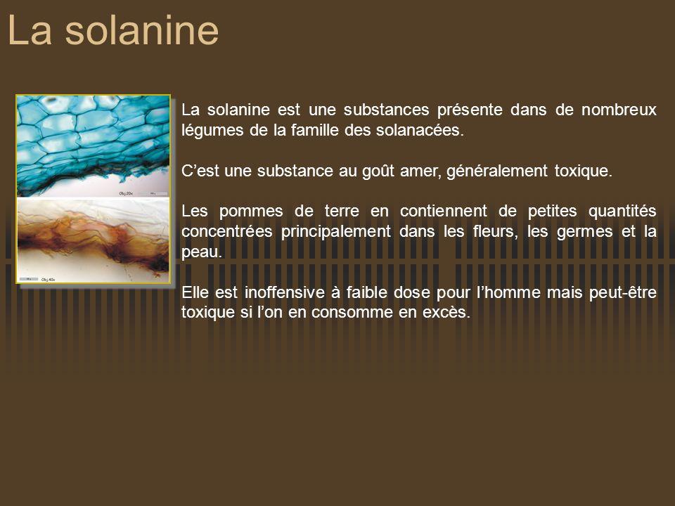 La solanine La solanine est une substances présente dans de nombreux légumes de la famille des solanacées.