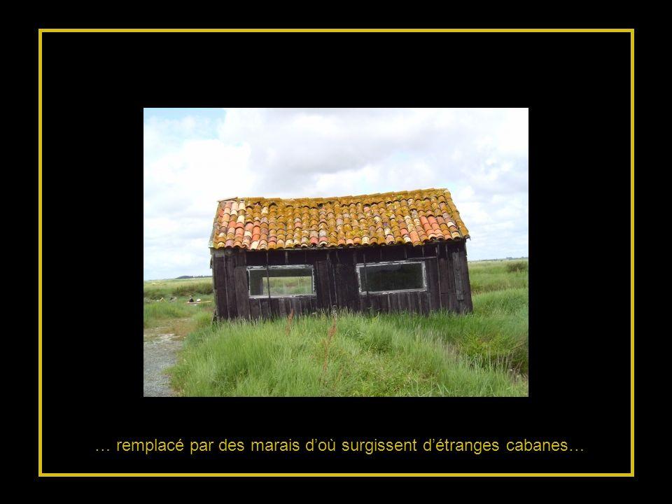 … remplacé par des marais d'où surgissent d'étranges cabanes…
