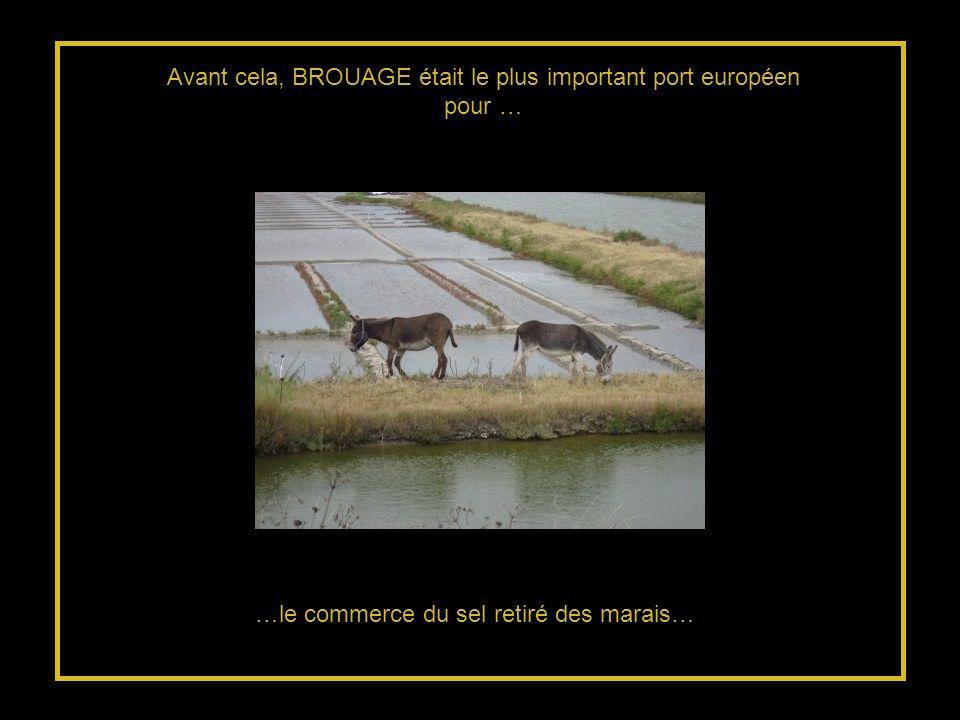 Avant cela, BROUAGE était le plus important port européen pour …