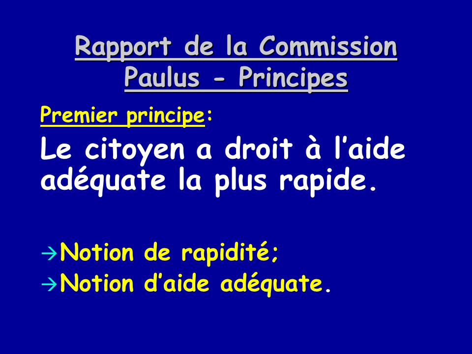 Rapport de la Commission Paulus - Principes