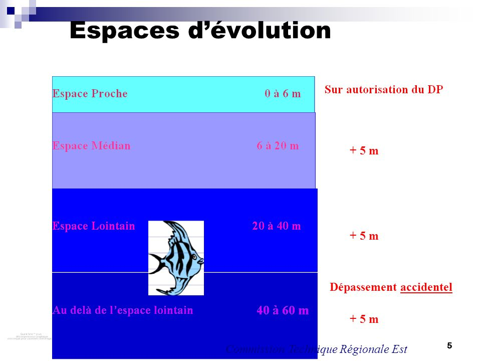 Espaces d'évolution + 5 m + 5 m Dépassement accidentel + 5 m