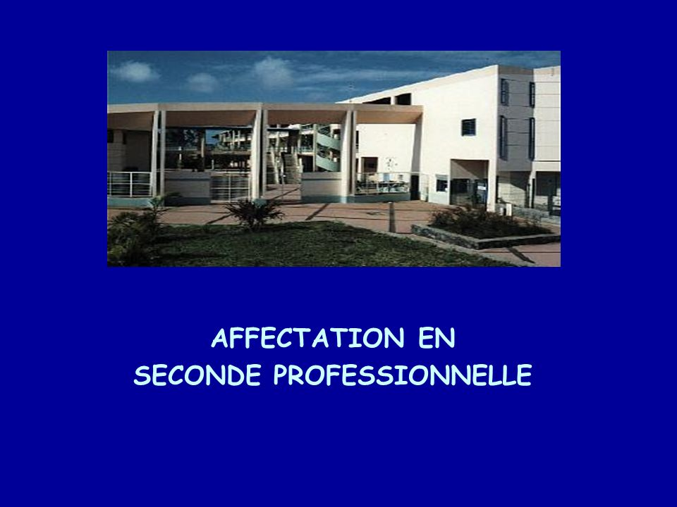 AFFECTATION EN SECONDE PROFESSIONNELLE