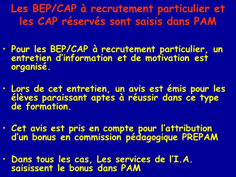 Les BEP/CAP à recrutement particulier et les CAP réservés sont saisis dans PAM