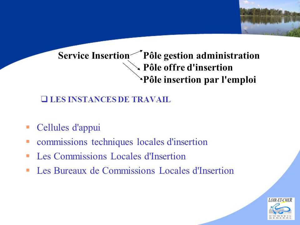 commissions techniques locales d insertion