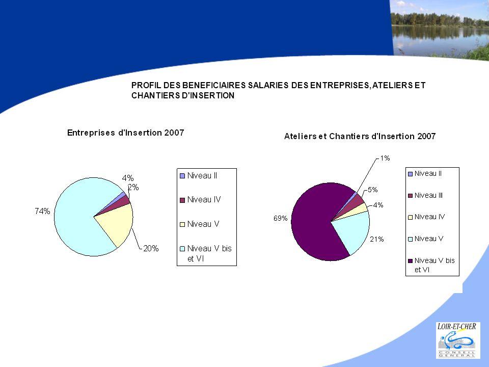 PROFIL DES BENEFICIAIRES SALARIES DES ENTREPRISES, ATELIERS ET CHANTIERS D INSERTION