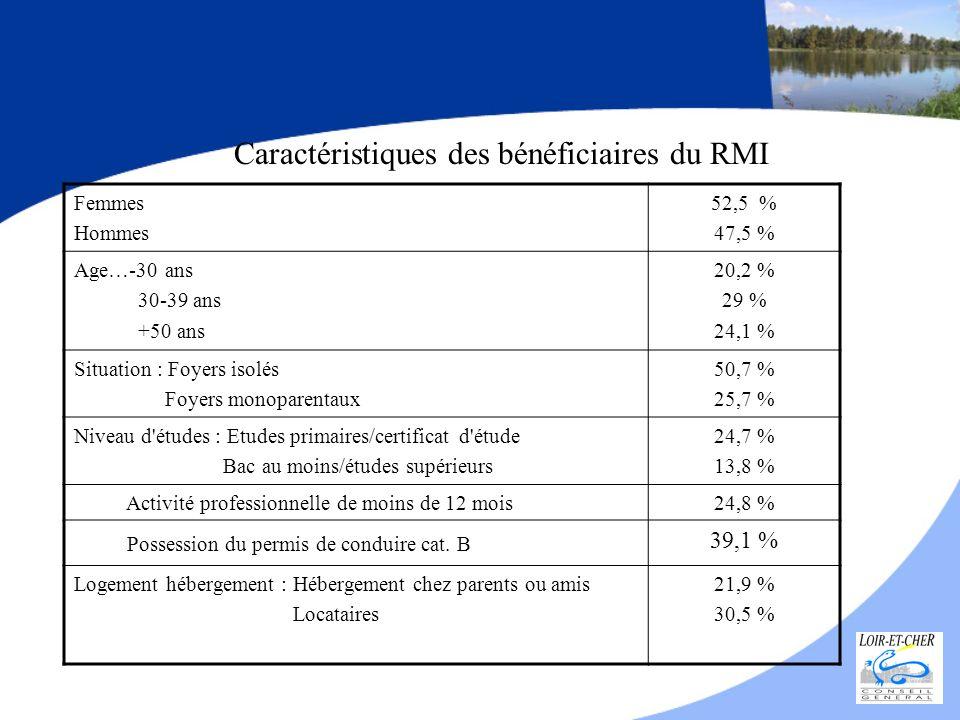 Caractéristiques des bénéficiaires du RMI