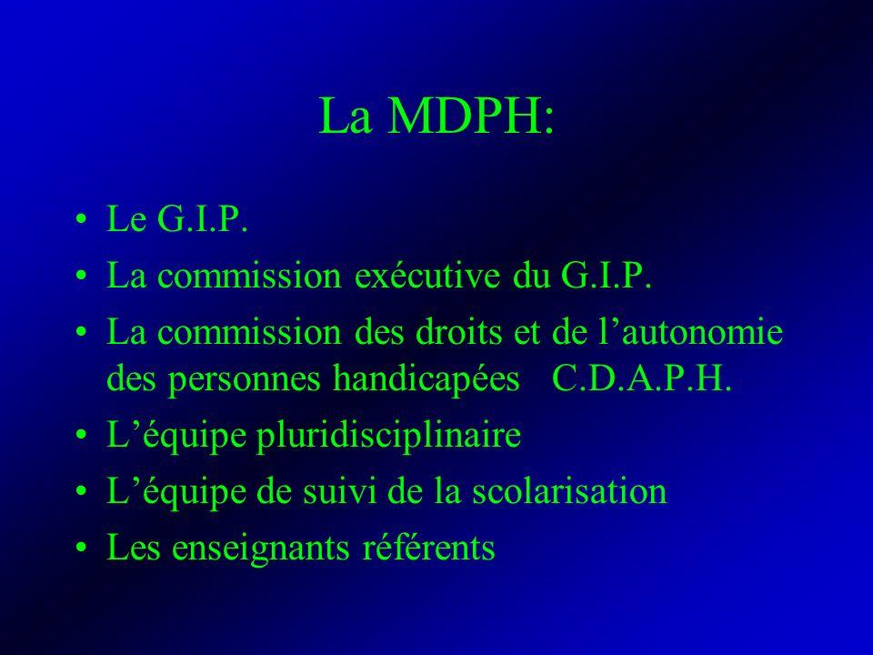 La MDPH: Le G.I.P. La commission exécutive du G.I.P.