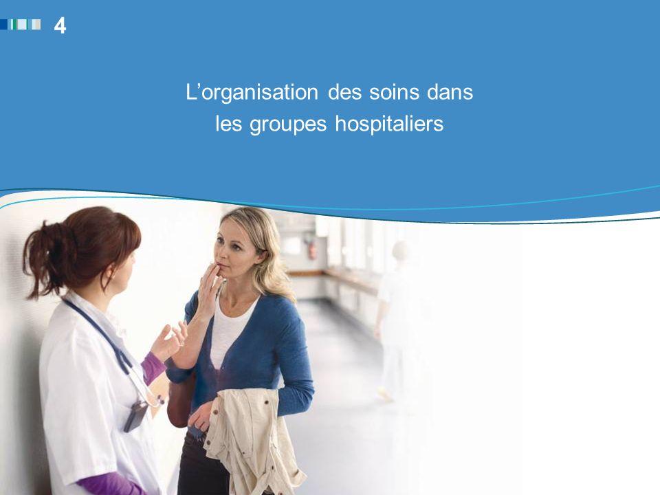 4 L'organisation des soins dans les groupes hospitaliers