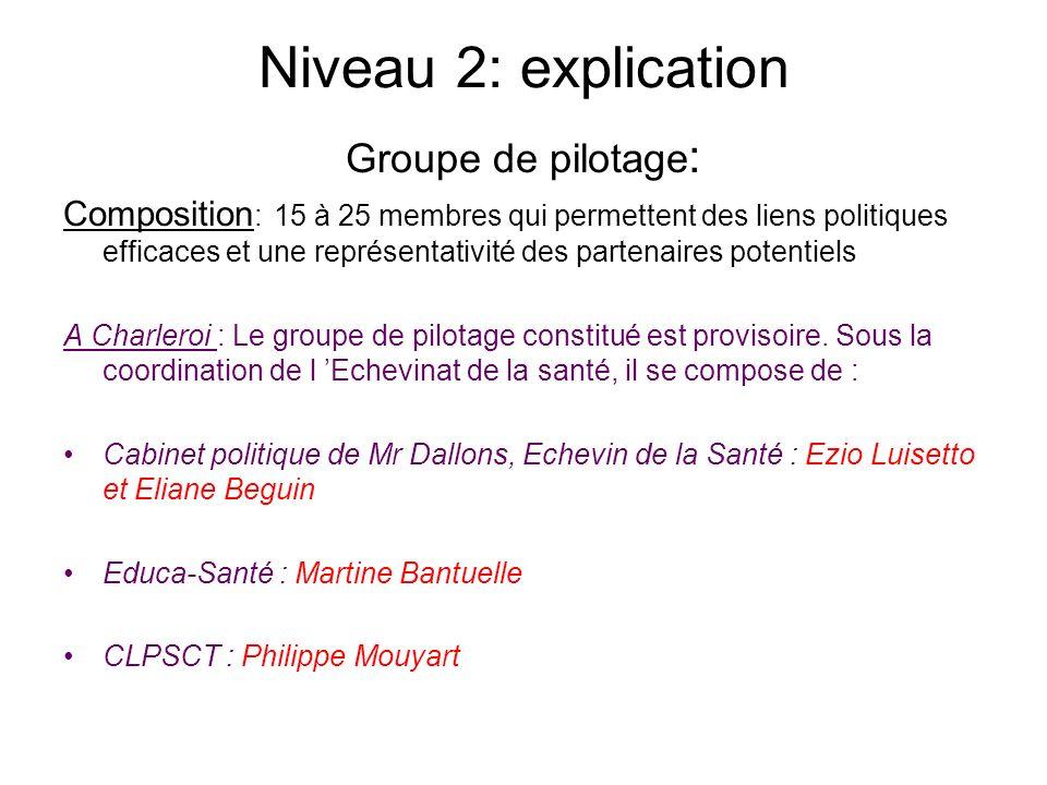 Niveau 2: explication Groupe de pilotage: