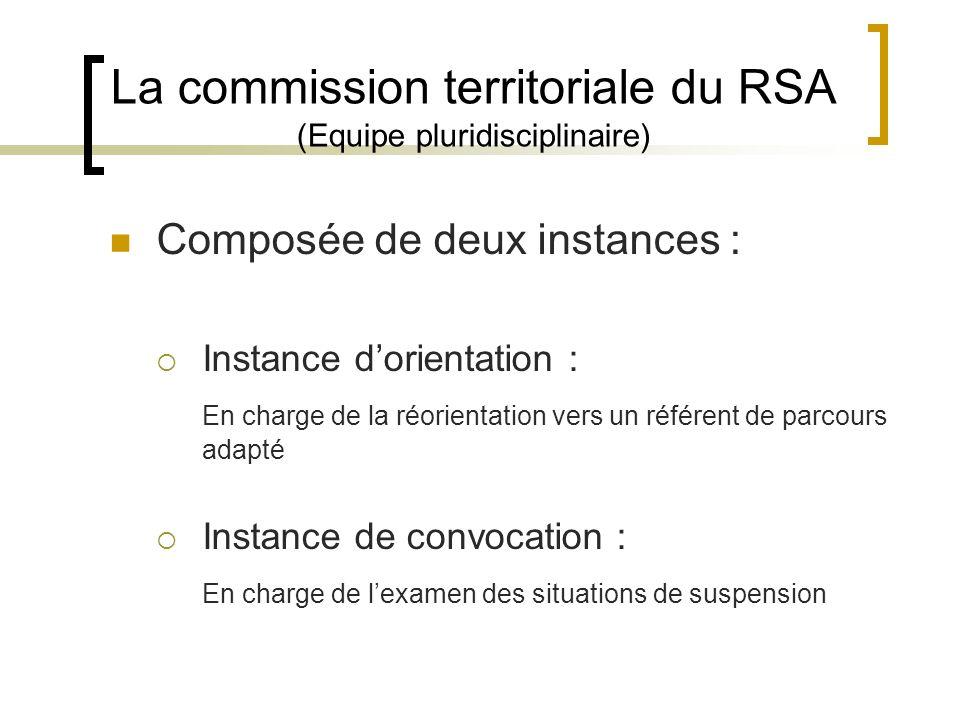 La commission territoriale du RSA (Equipe pluridisciplinaire)