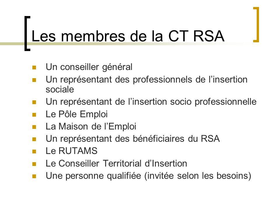 Les membres de la CT RSA Un conseiller général