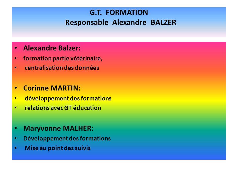 G.T. FORMATION Responsable Alexandre BALZER