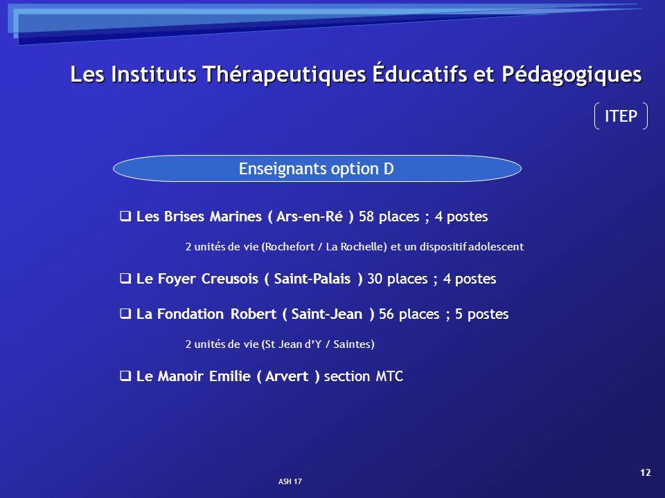 Les Instituts Thérapeutiques Éducatifs et Pédagogiques