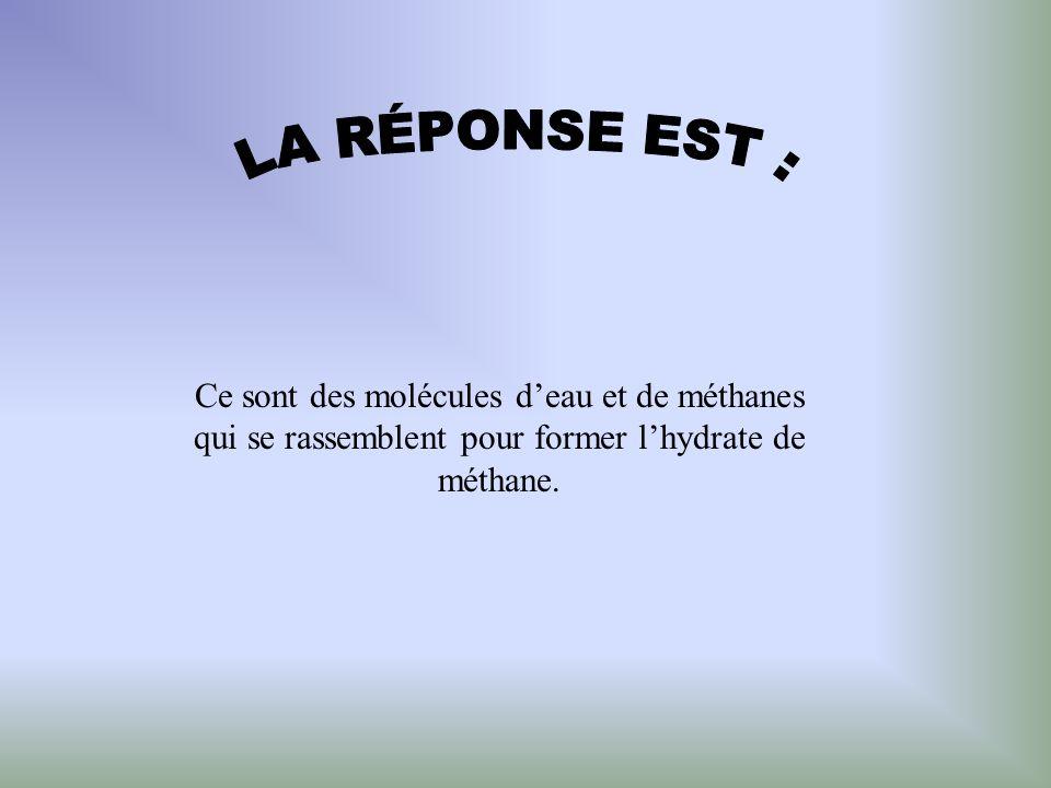 LA RÉPONSE EST : Ce sont des molécules d'eau et de méthanes qui se rassemblent pour former l'hydrate de méthane.