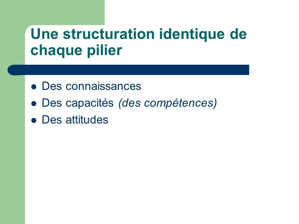 Une structuration identique de chaque pilier