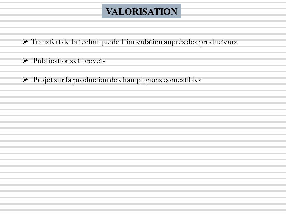 VALORISATION Transfert de la technique de l'inoculation auprès des producteurs. Publications et brevets.
