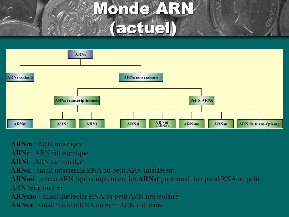 Monde ARN (actuel)