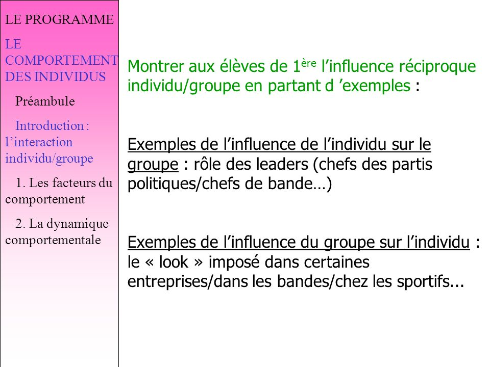 LE PROGRAMME LE COMPORTEMENT DES INDIVIDUS. Préambule. Introduction : l'interaction individu/groupe.