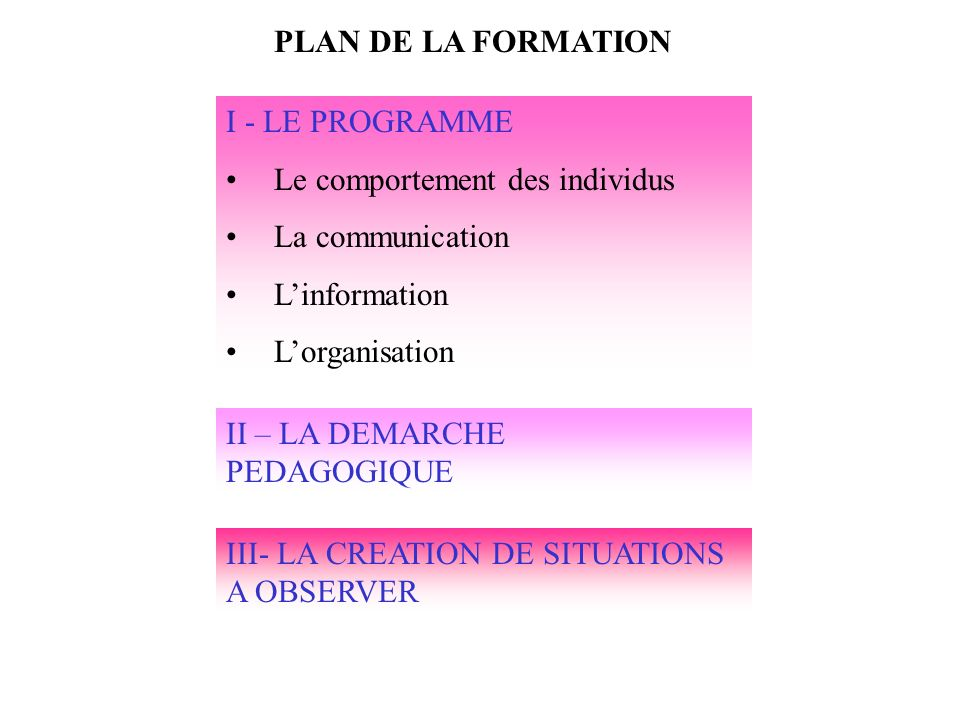 PLAN DE LA FORMATION I - LE PROGRAMME. Le comportement des individus. La communication. L'information.