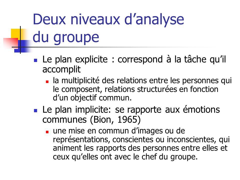 Deux niveaux d'analyse du groupe