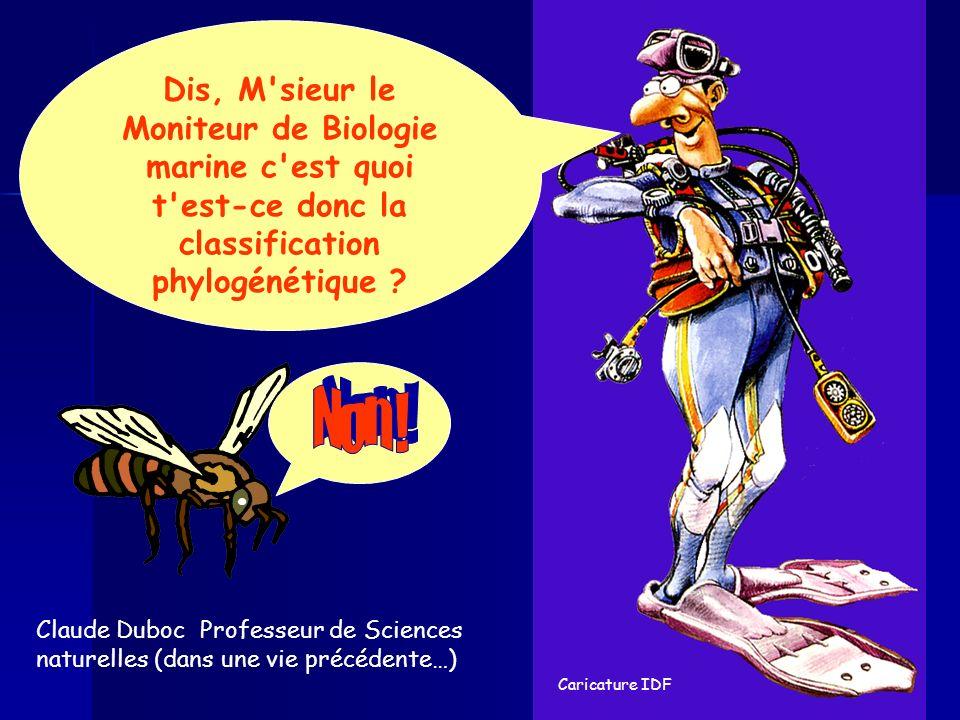 Caricature IDF Dis, M sieur le Moniteur de Biologie marine c est quoi t est-ce donc la classification phylogénétique