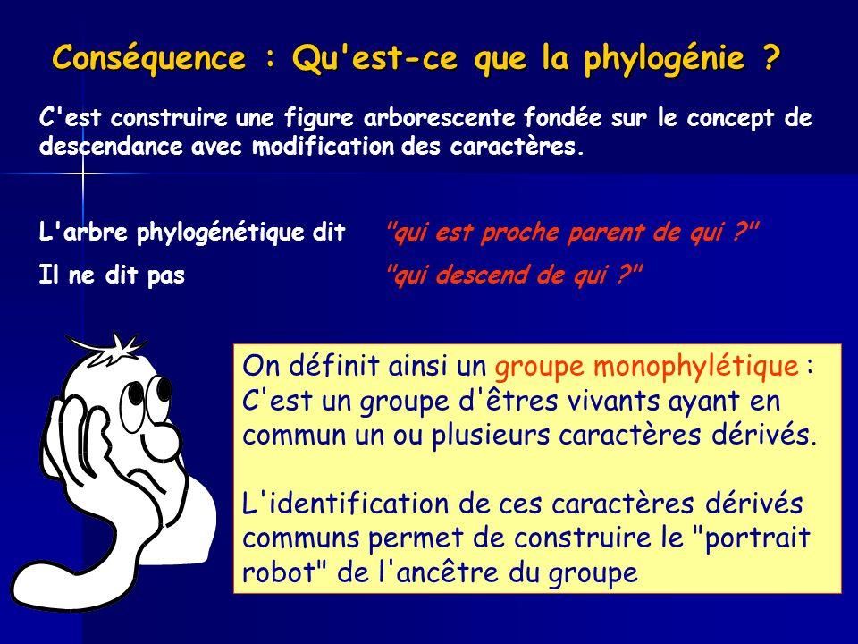 Conséquence : Qu est-ce que la phylogénie