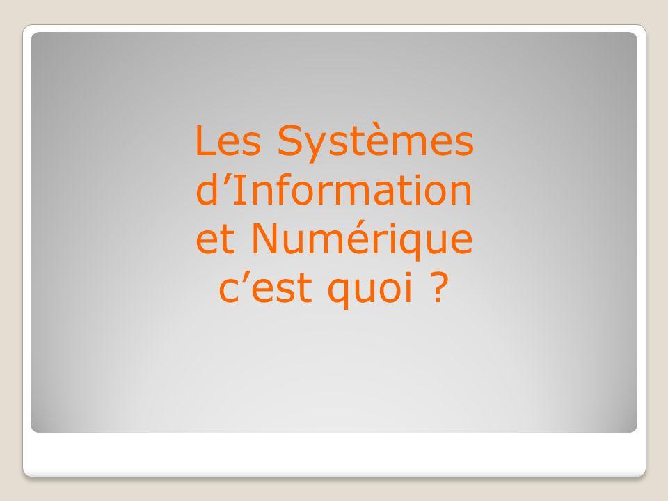 Les Systèmes d'Information et Numérique c'est quoi