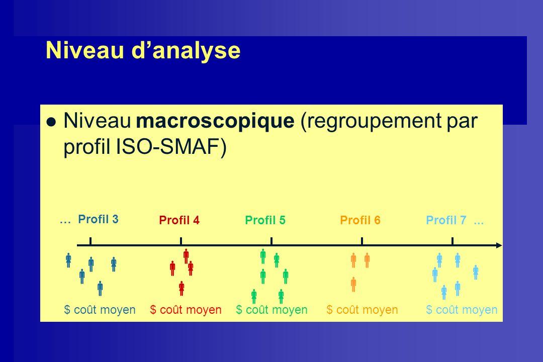 Niveau d'analyse Niveau macroscopique (regroupement par profil ISO-SMAF) … Profil 3. Profil 4. Profil 5.