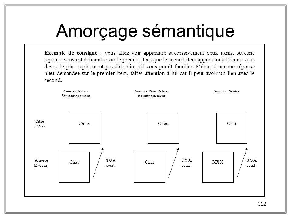 Amorce Reliée Sémantiquement Amorce Non Reliée sémantiquement