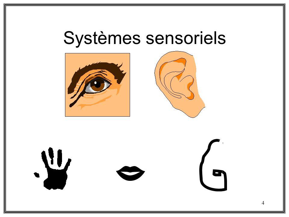 Systèmes sensoriels