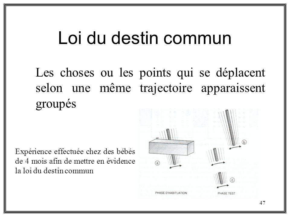 Loi du destin commun Les choses ou les points qui se déplacent selon une même trajectoire apparaissent groupés.