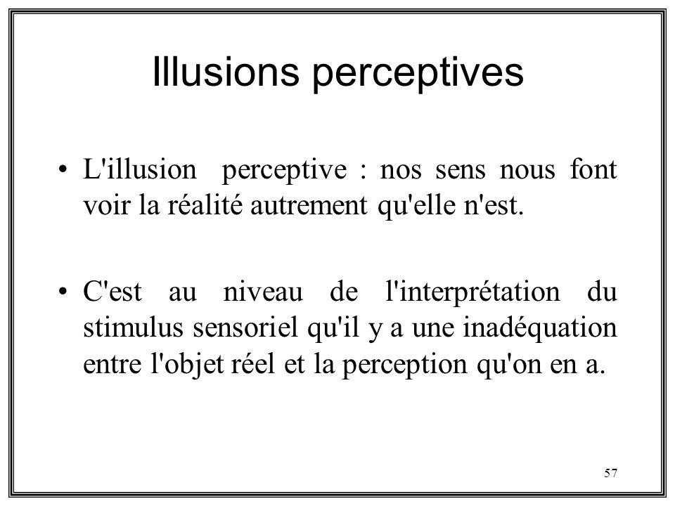 Illusions perceptives