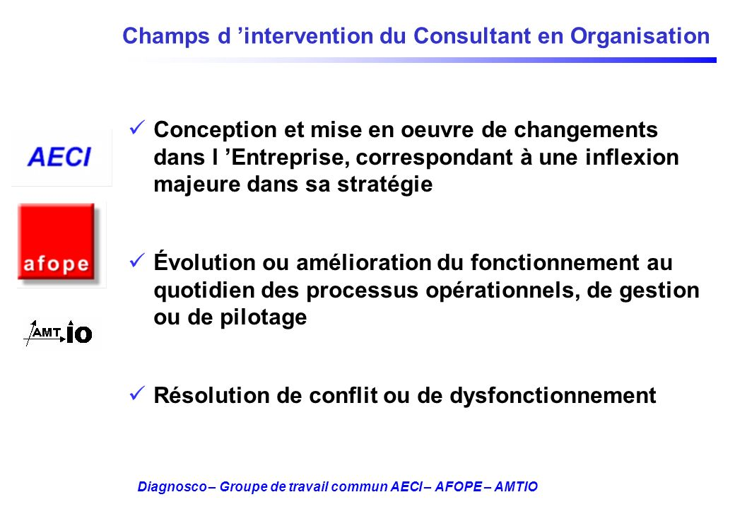Champs d 'intervention du Consultant en Organisation