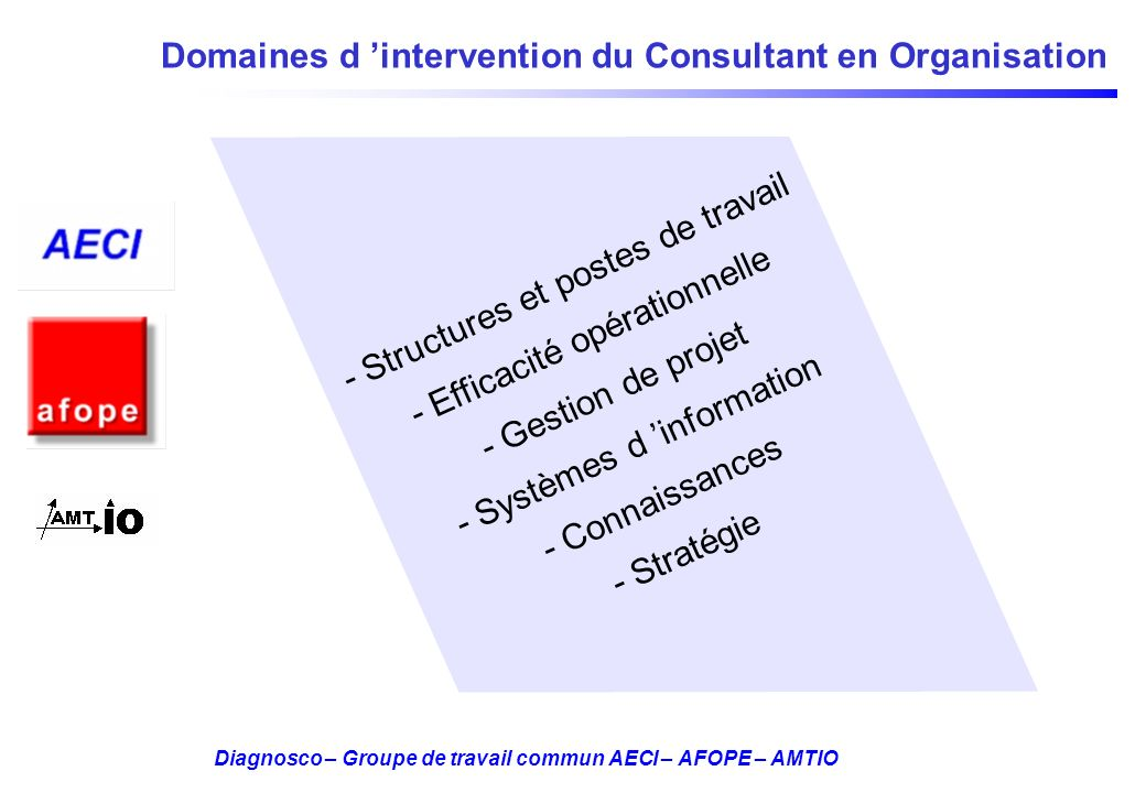 Domaines d 'intervention du Consultant en Organisation