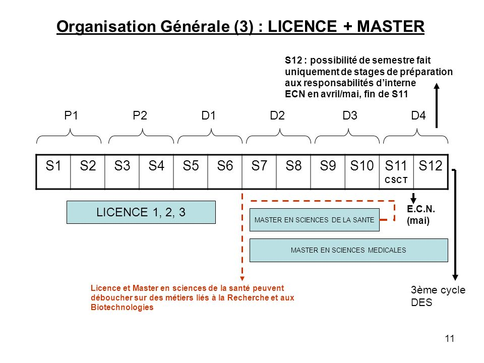 Organisation Générale (3) : LICENCE + MASTER