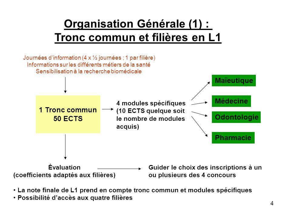 Organisation Générale (1) : Tronc commun et filières en L1