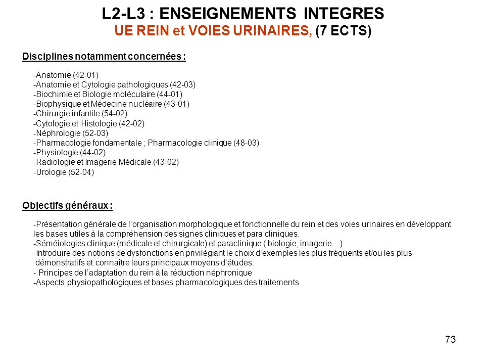 L2-L3 : ENSEIGNEMENTS INTEGRES UE REIN et VOIES URINAIRES, (7 ECTS)