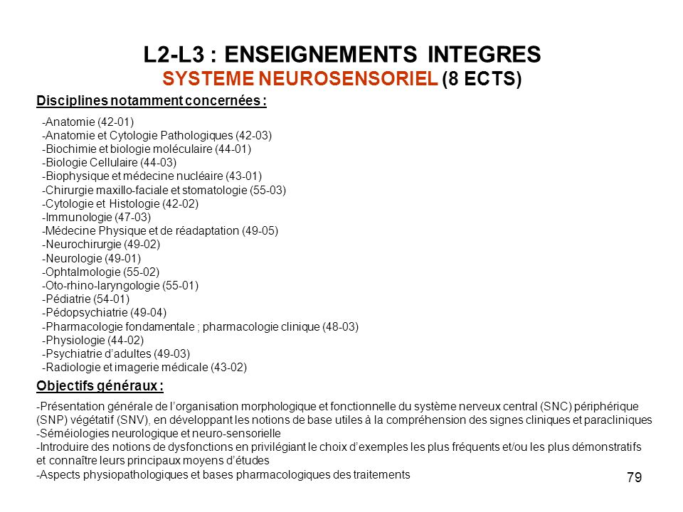 L2-L3 : ENSEIGNEMENTS INTEGRES SYSTEME NEUROSENSORIEL (8 ECTS)