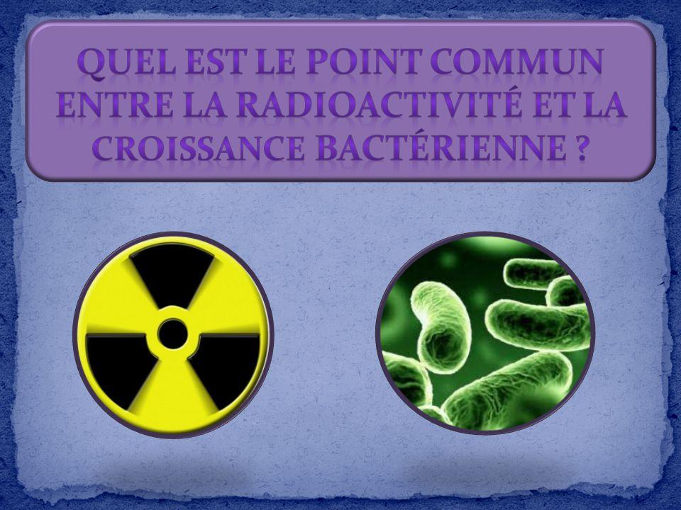 Quel est le point commun entre la radioactivité et la croissance bactérienne