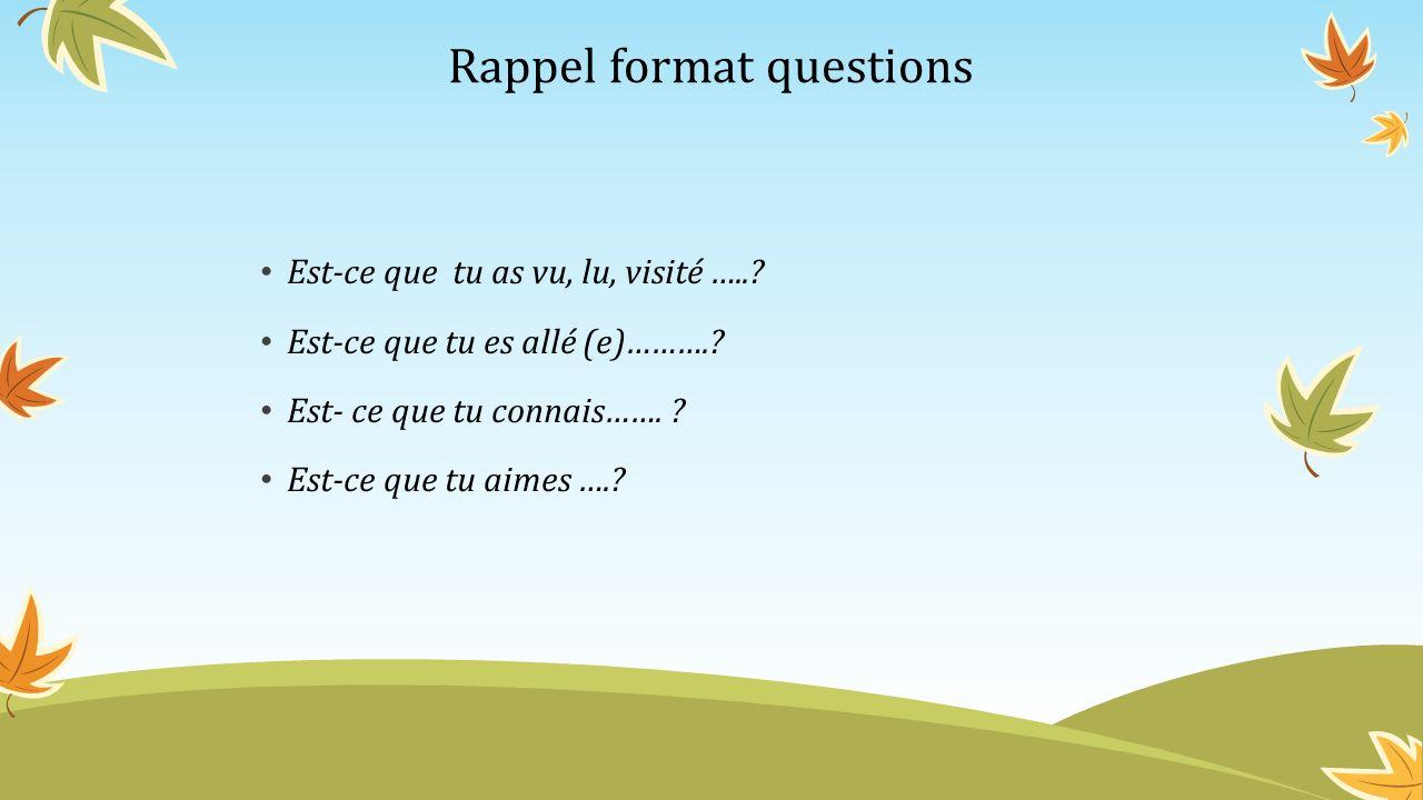 Rappel format questions