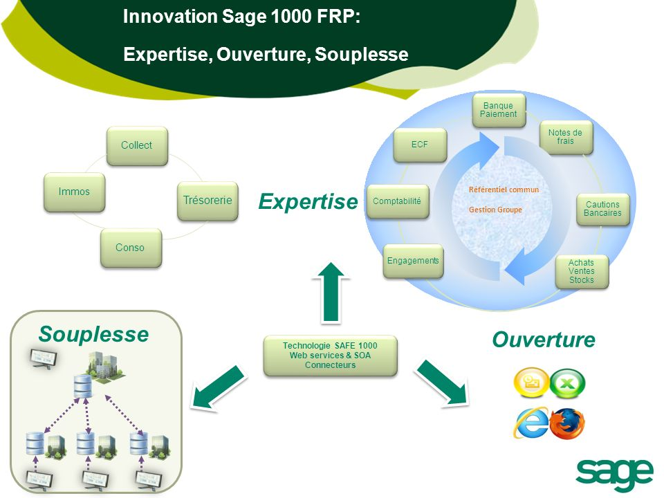 Expertise Souplesse Ouverture Innovation Sage 1000 FRP: