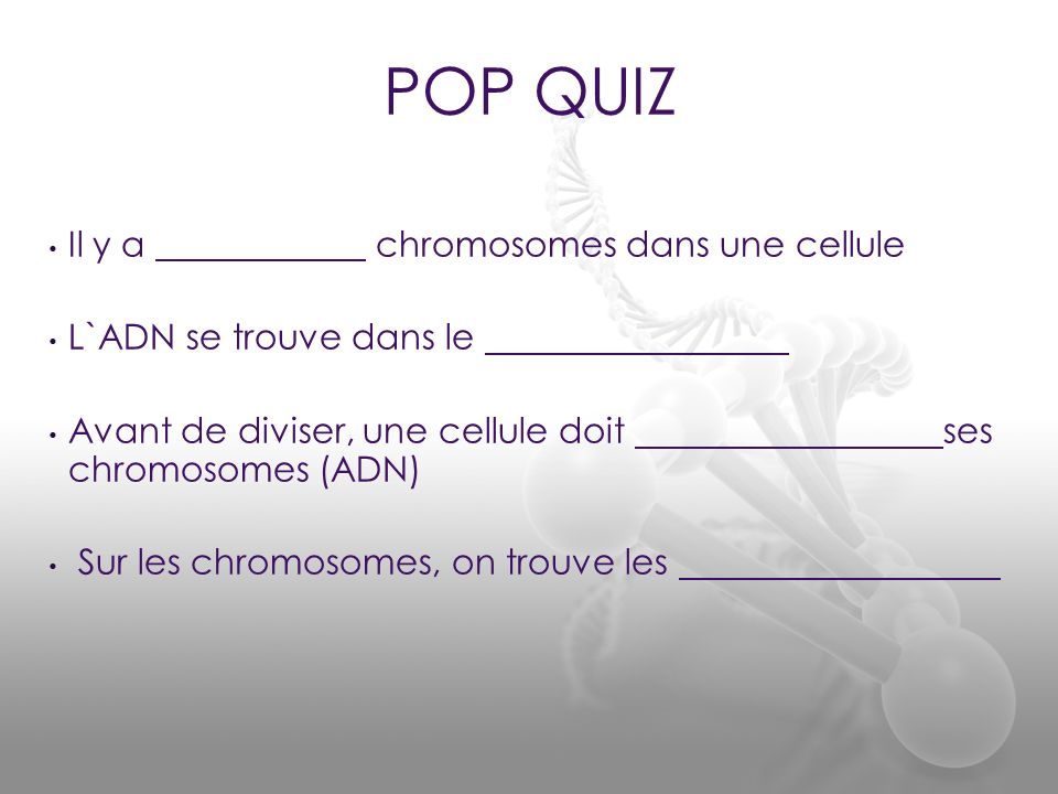 POP QUIZ Il y a chromosomes dans une cellule L`ADN se trouve dans le