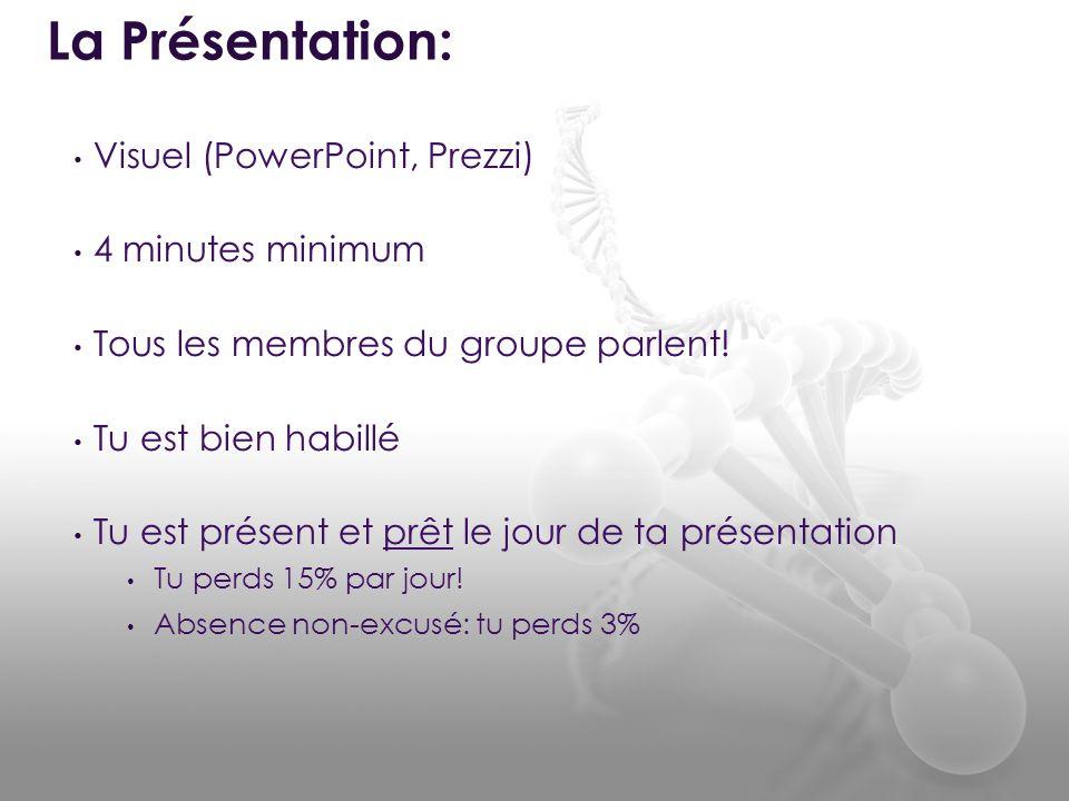 La Présentation: Visuel (PowerPoint, Prezzi) 4 minutes minimum