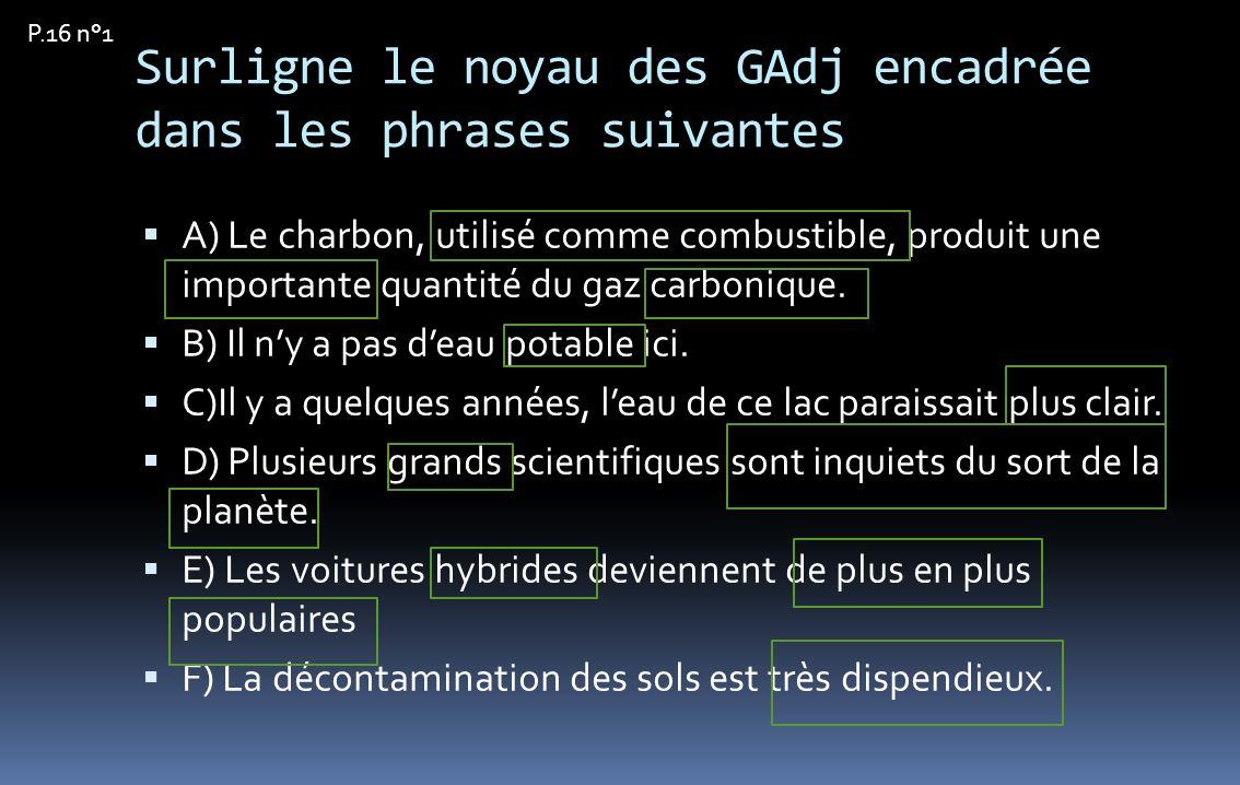 Surligne le noyau des GAdj encadrée dans les phrases suivantes